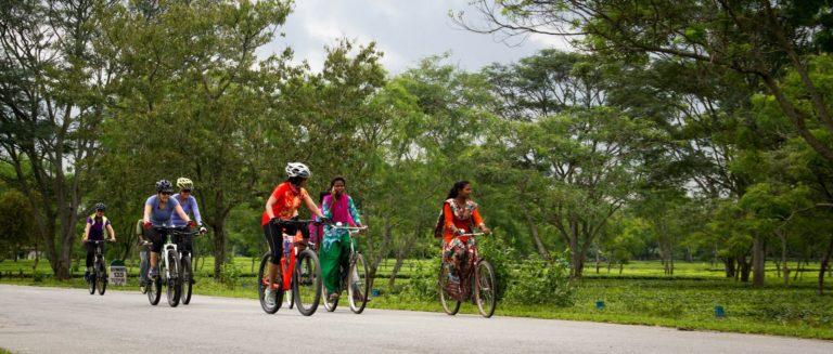 Bike ride at Kaziranga National Park